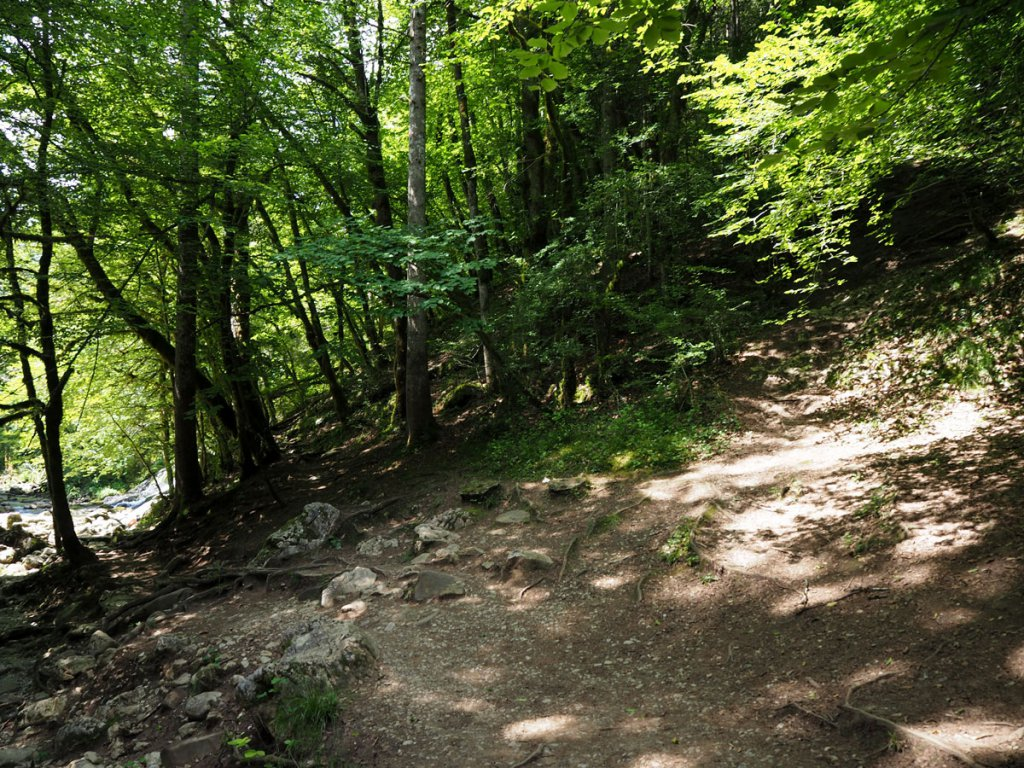 Petite sentier pour rejoindre le haut de la cascade du Pissieu