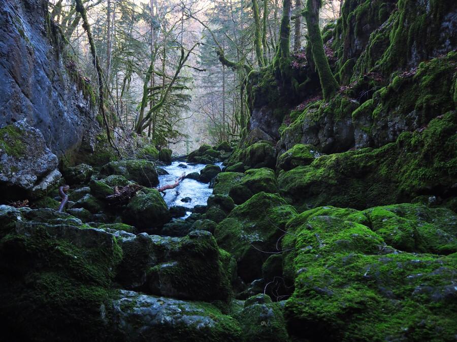 Le haut de la cascade du Pissieu