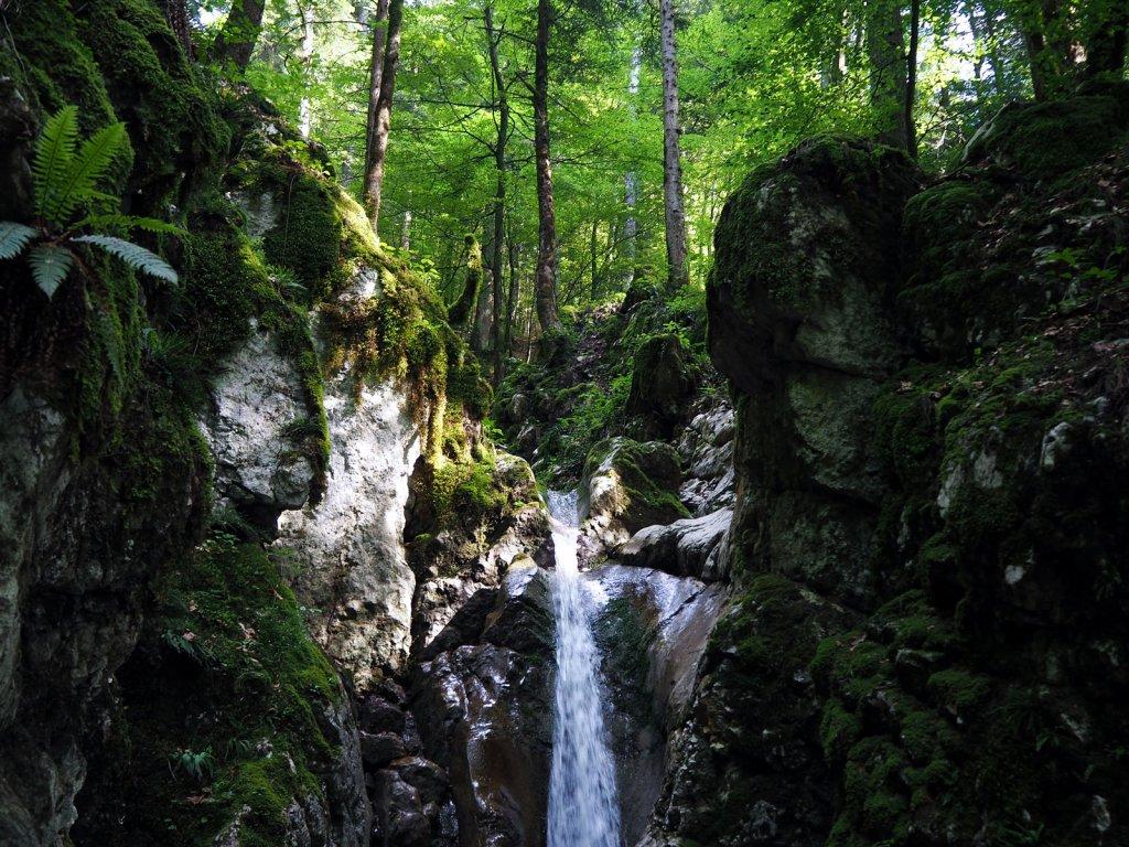 Le bas de la cascade des Nantisses