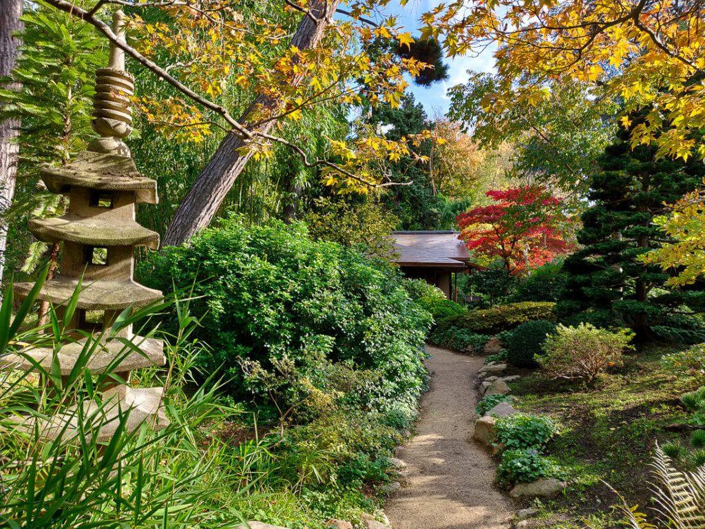 Jardins Albert Kahn à l'automne