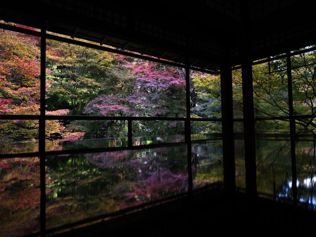 vue depuis le deuxième étage du temple de Ruriko-in - Japon en automne, momijigari
