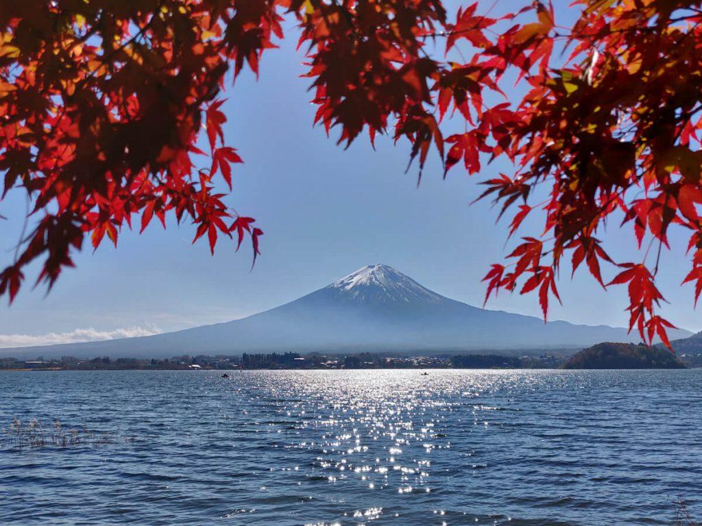 Momijigari à Kawaguchiko. Le Mont Fuji en automne, Japon