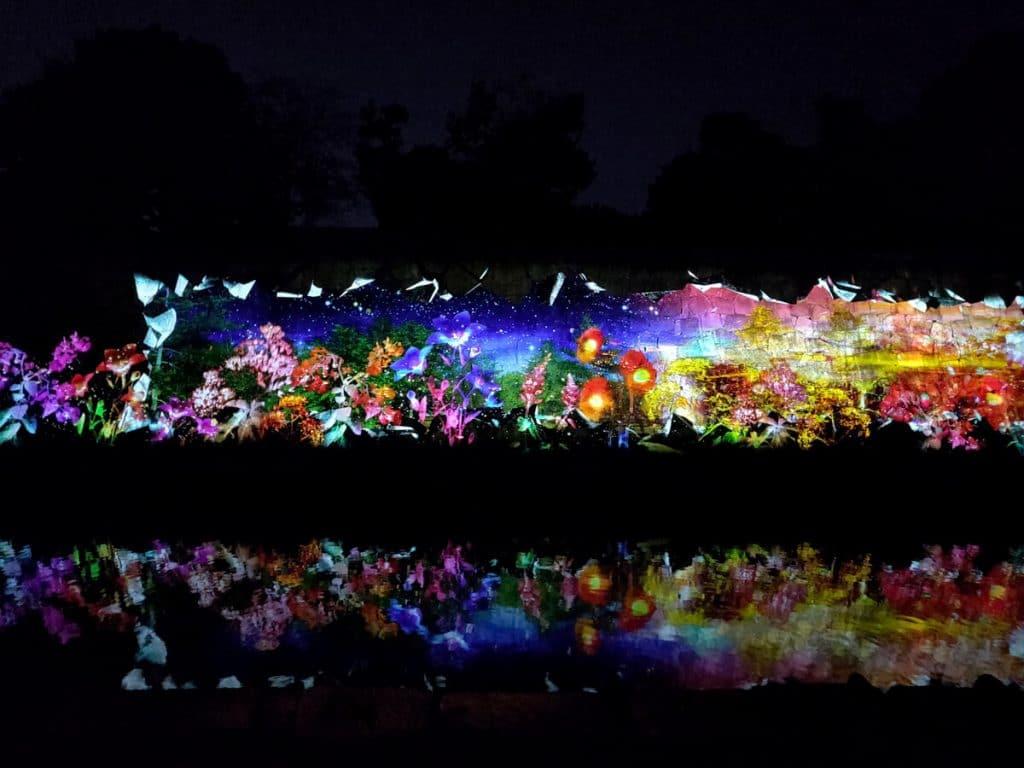 Spectacle de lumière en automne sur un mur du chateau Nijo-jo de nuit