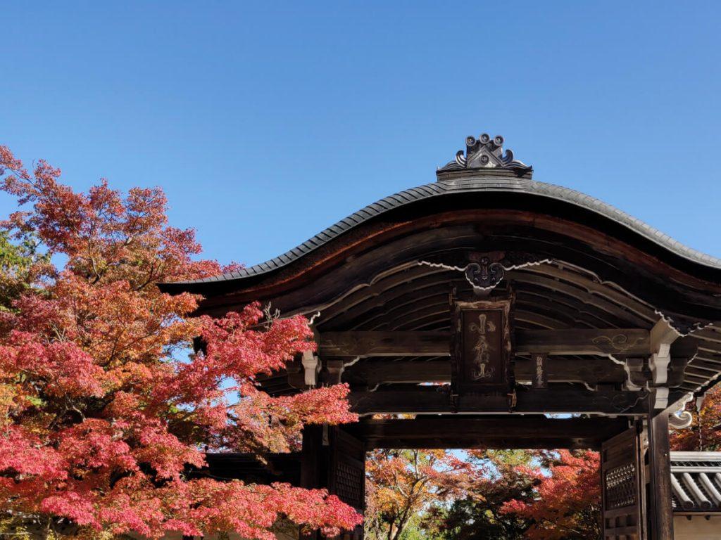 Portail principal du temple de Nison-in avec un érable rouge