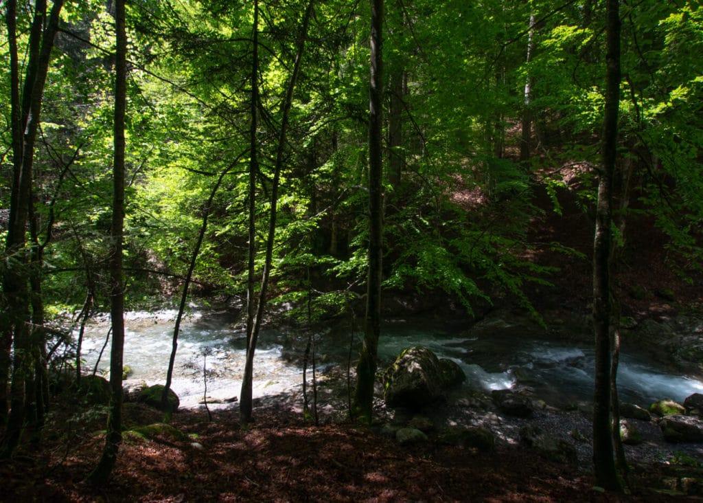 Le torrent du Chinaillon en bas de la cascade Mystérieuse