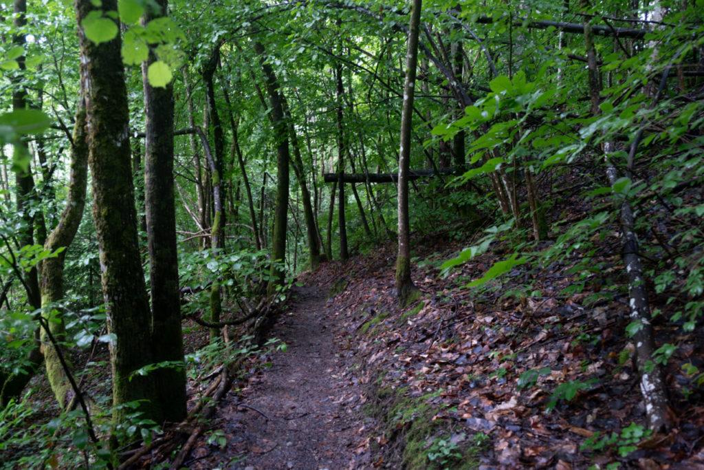 Le sentier donnant accès à la cascade de Fontany