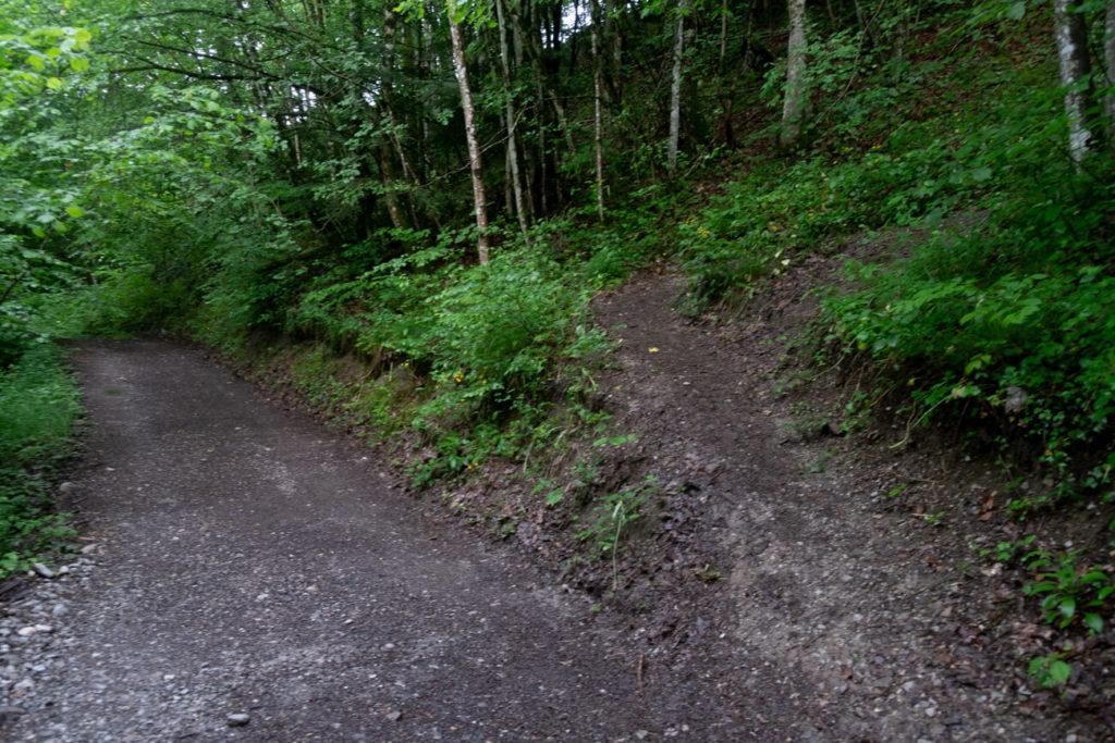 La bifurcation du sentier