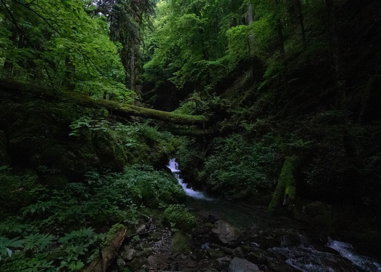 le torrent de la cascade de la belle inconnue