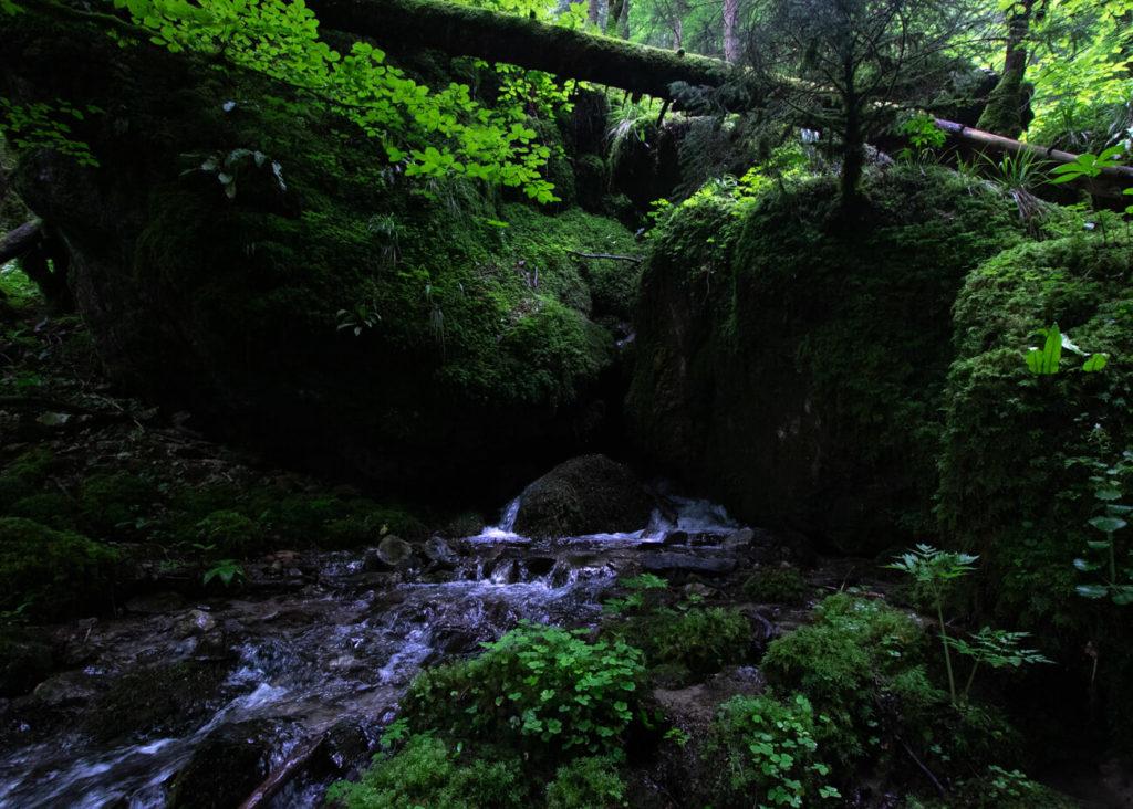 Torrent prés du sentier - cascade de la belle inconnue