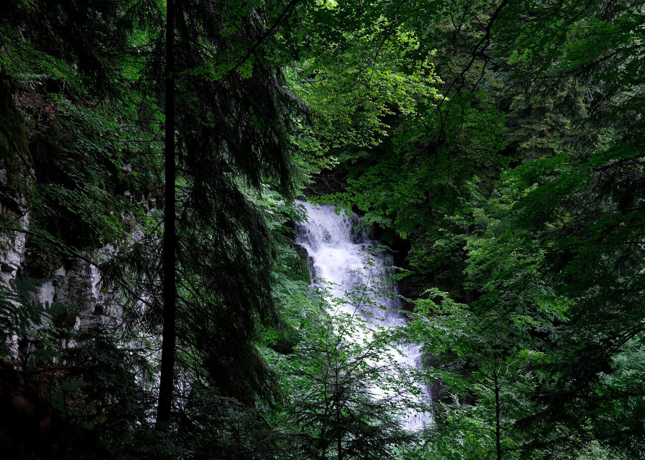 Cascades proches du lac d'Annecy - Cascade du creux de l'enfer vue du ravin