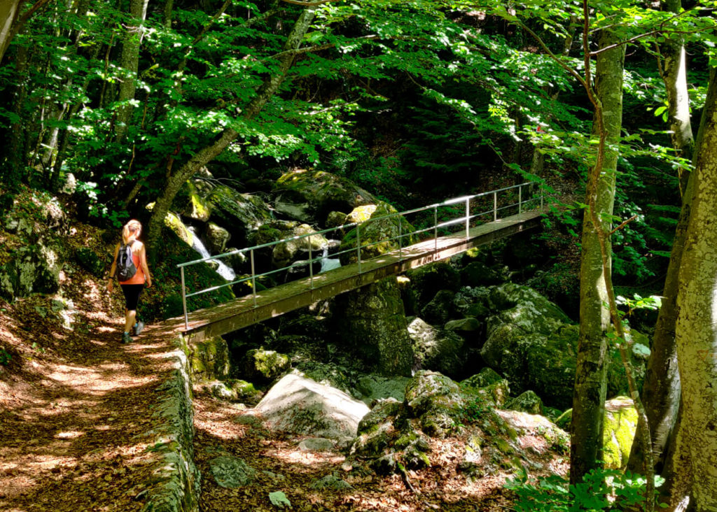 la passerelle du Lovettaz  - cascade de la Doria