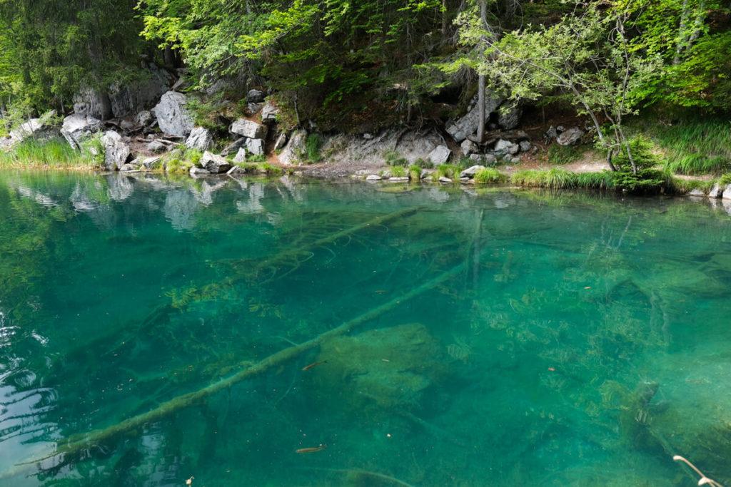 L'eau transparente du lac vert de Passy
