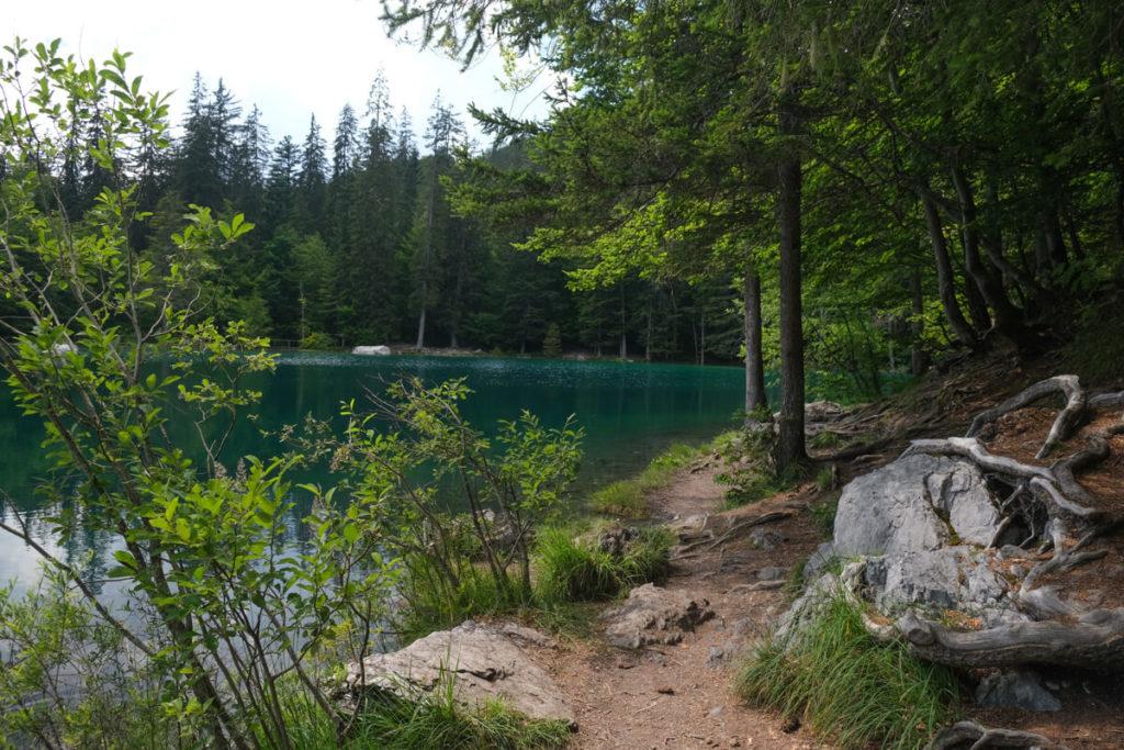 Petit sentier faisant le tour du lac vert de passy