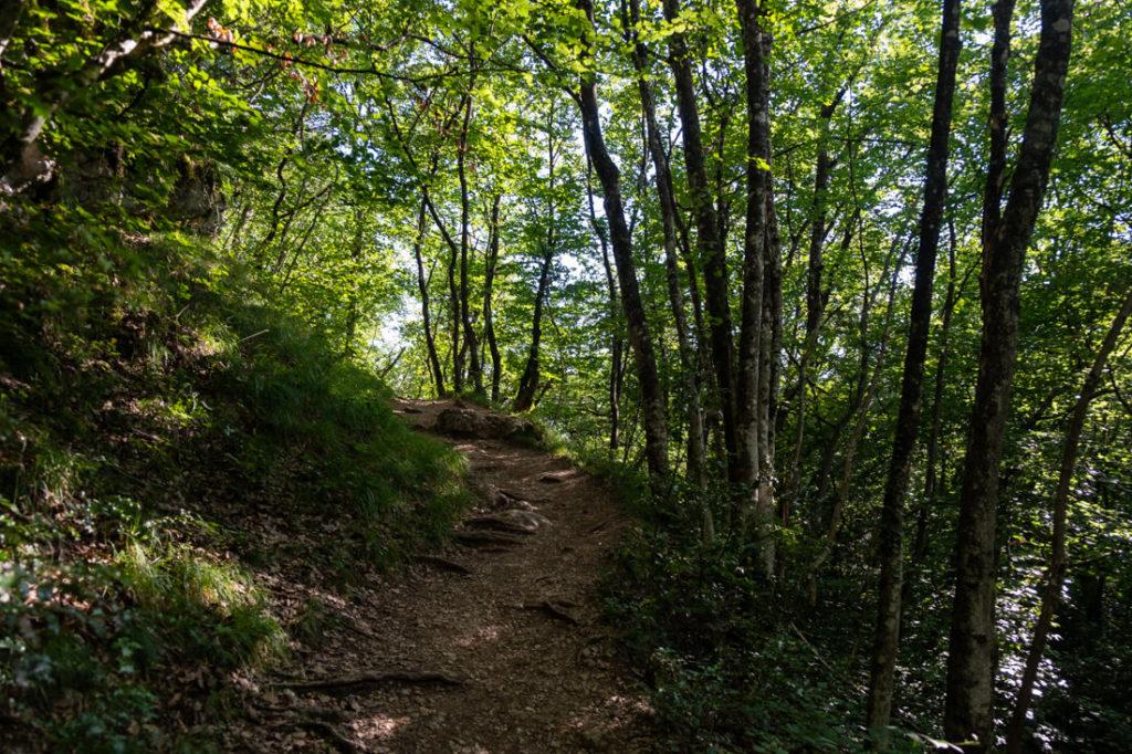 Sentier de la réserve naturelle du Roc de Chère
