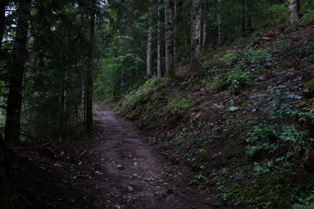 Le sentier menant à la Cascade de Burgeat à Manigod