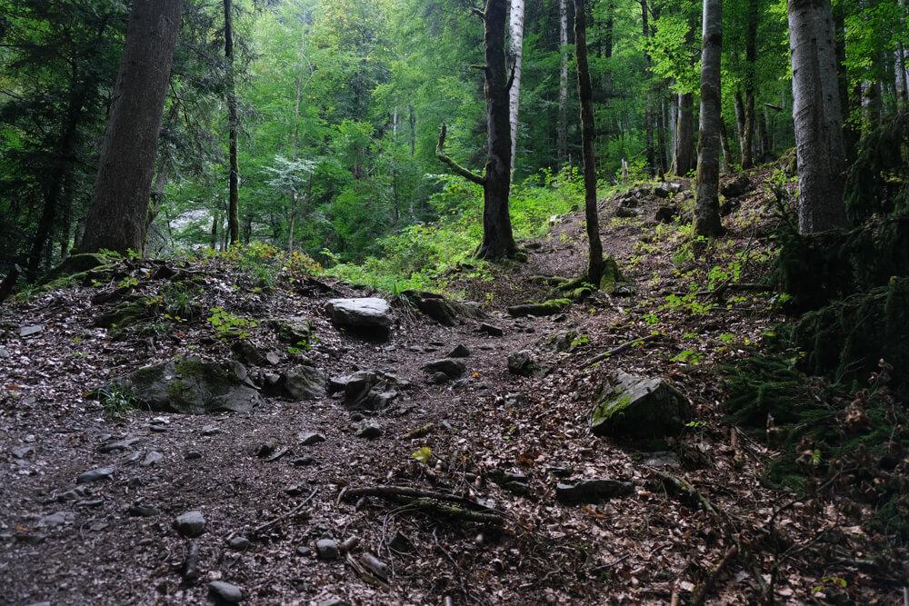 Sentier menant à la cascade du Nant d'Ant