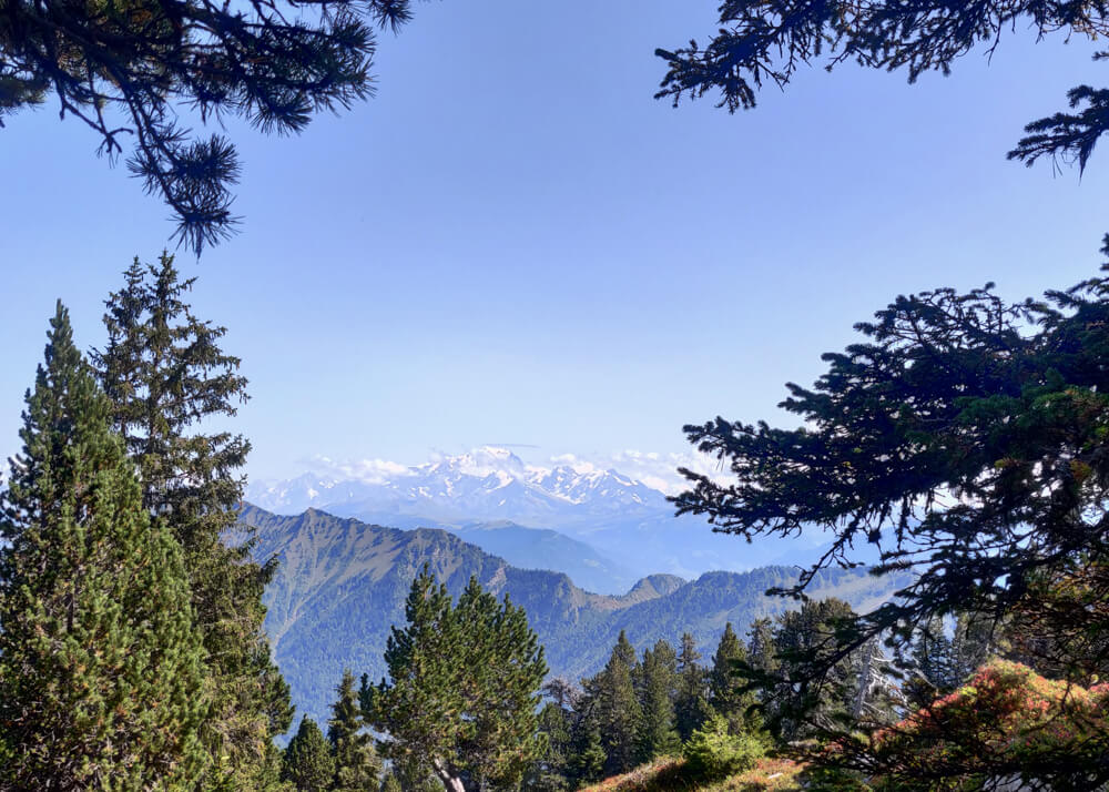 vue sur Mont Blanc depuis la via ferrata la cordée des Dahuts