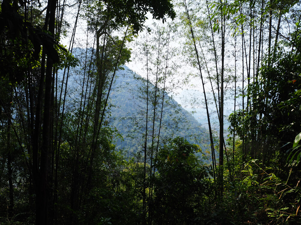 Point de vue depuis Pha Ngern. vang Vieng