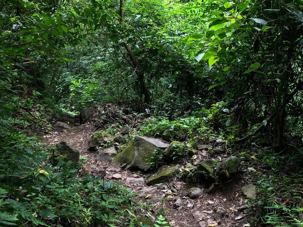 sentier de la cascade San Ramon sur l'ile d'Ometepe