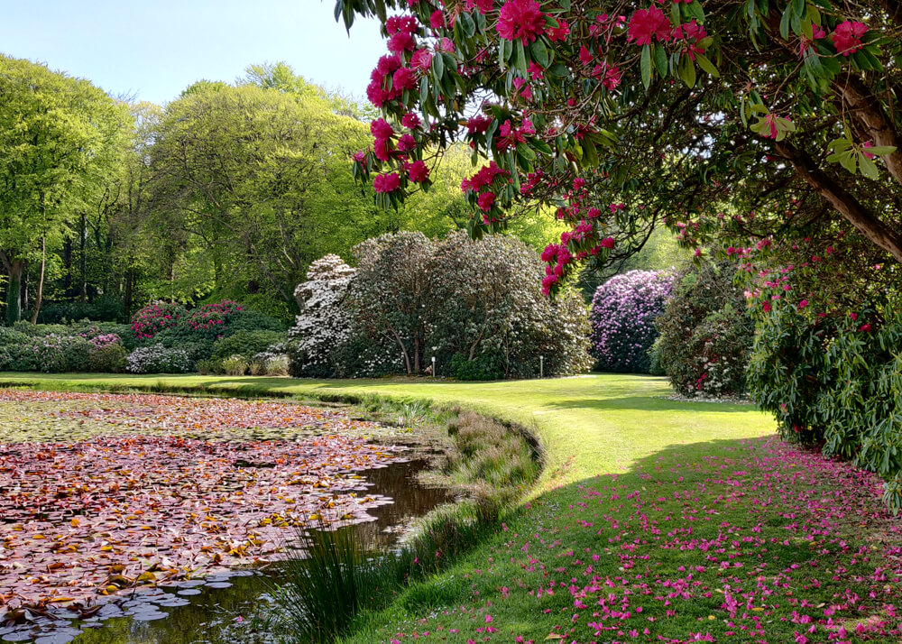 Etang du jardins du Castle Kennedy Ayrshire